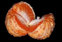 tangerine-623421_Clip