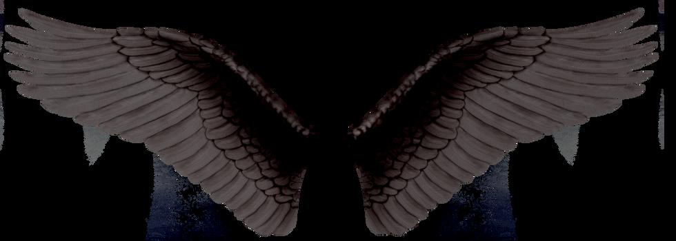 Wings-png-24