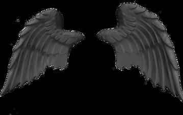 Wings-png-19