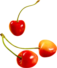Cherry PNG