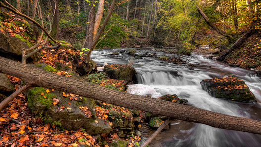 Cossyimages Waterfall (69).jpeg