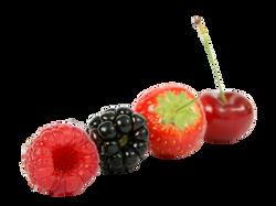 berry-1239100_Clip