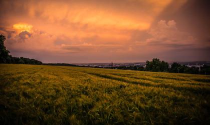 Cossyimages Sunset (65).jpg