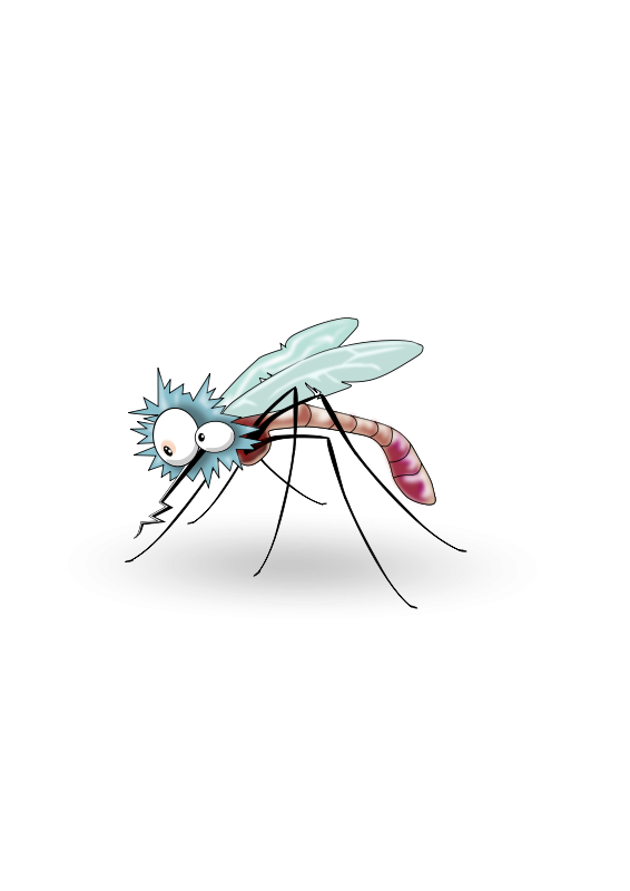 Mosquito_02