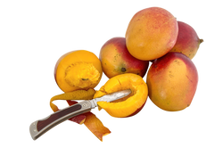 mango-642957_Clip