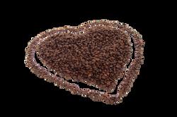 bean-2483_Clip