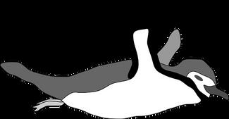 penguin-47655__340.png