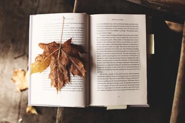 Cossyimages Autumn (35).jpg