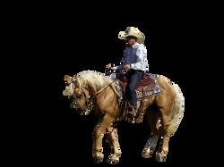 cowboy-746992_Clip