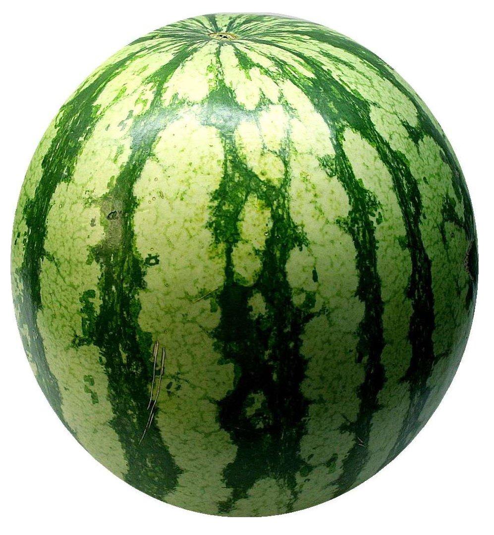 watermelon-74342_Clip
