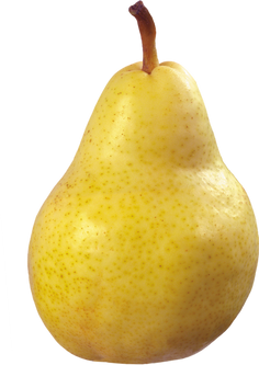 Pear PNG