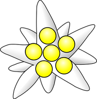 flower-34347__340.png