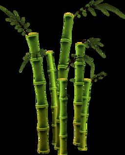 Bamboo (25).png