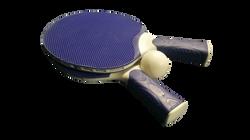 tennis-1141703_Clip