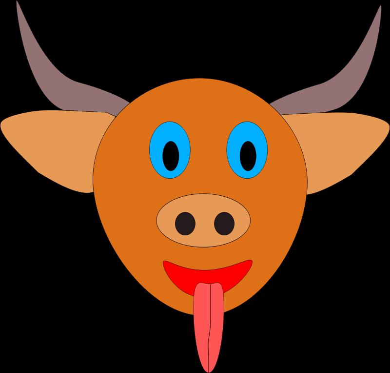 Machovka_bull