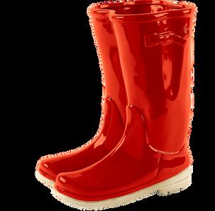 Wellington boots (66).png