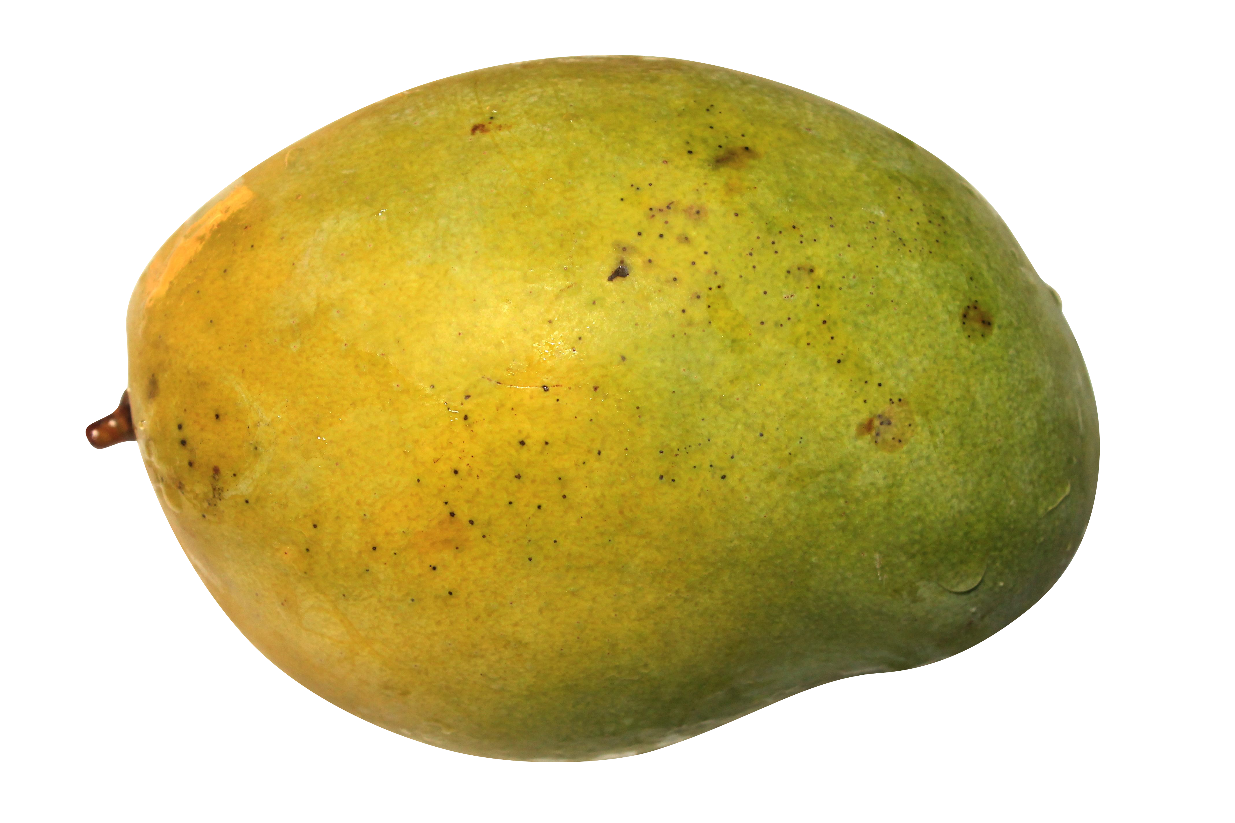 mango-896180_Clip