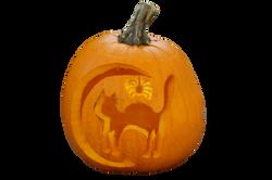 pumpkin-1005003_Clip