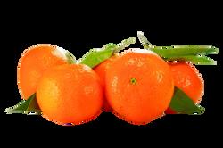 oranges-602271_Clip