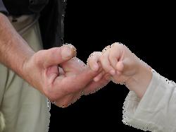 hands-1170549_Clip