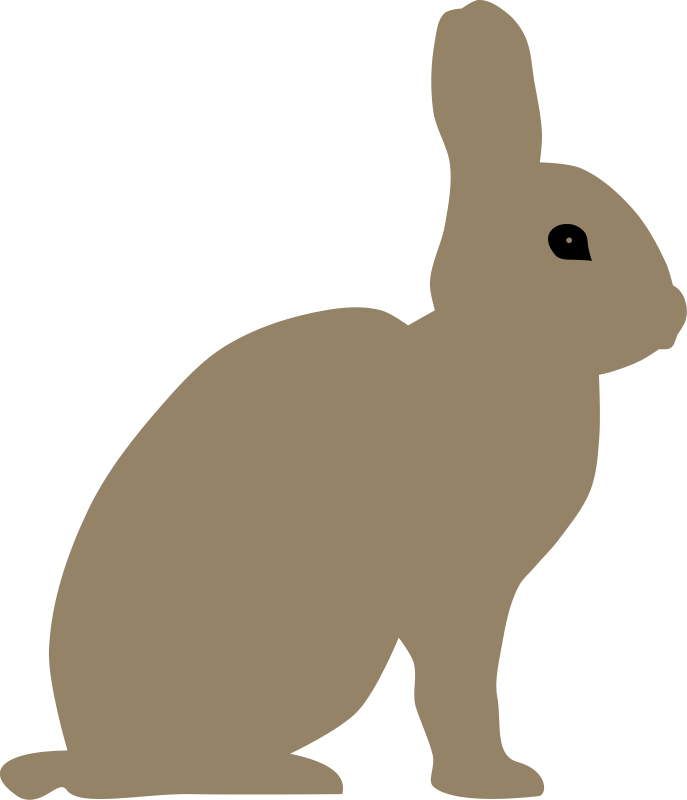 Rabbit_by_Rones