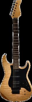 Electric guitar, FreePNGs