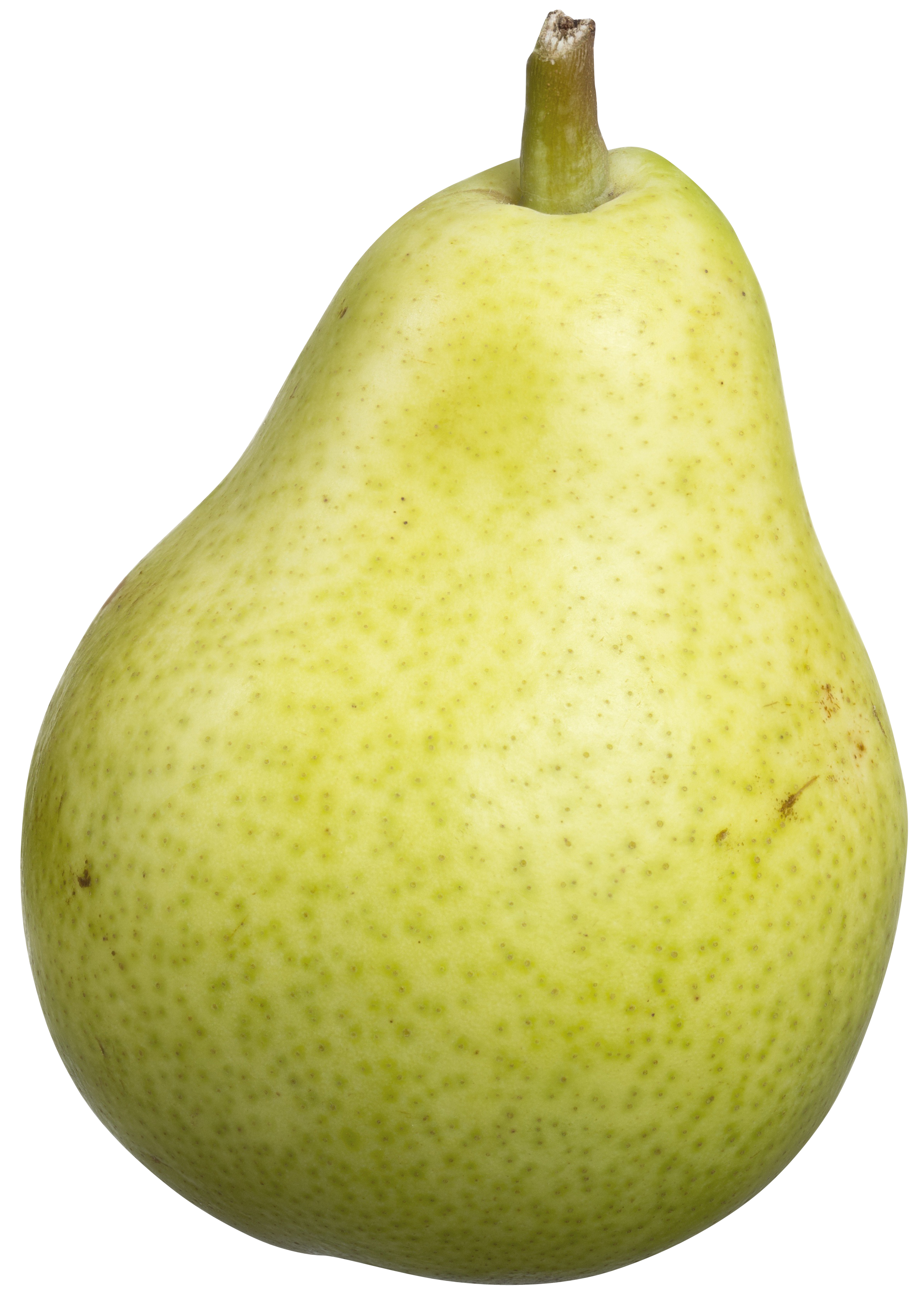 bartlett-pear-1269879_Clip