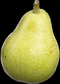 bartlett-pear-1269879_Clip