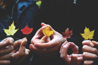 Cossyimages Autumn (47).jpg