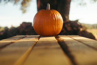Cossyimages Autumn (26).jpg