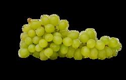 grapes-1281918_Clip