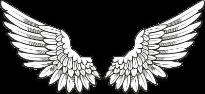 Wings-png-21