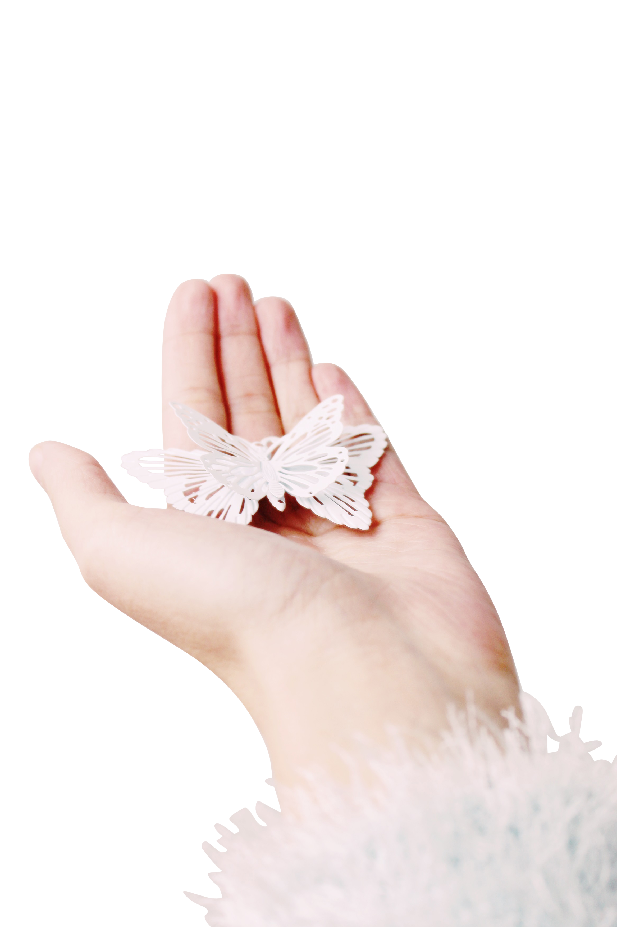 hand-1179562_Clip