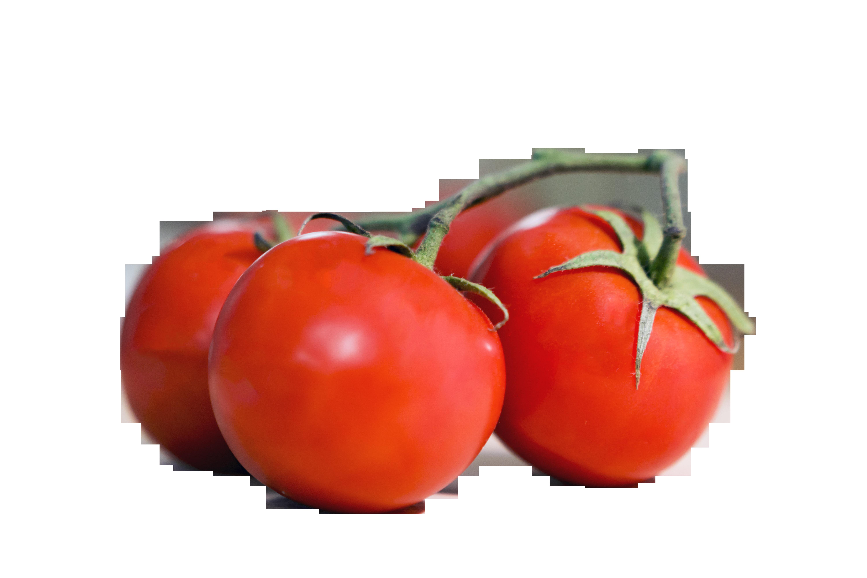 tomato-1269725_Clip