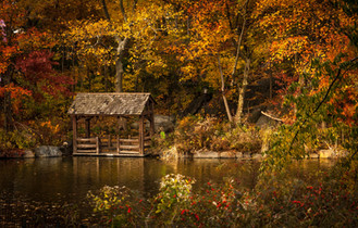 Cossyimages Autumn (17).jpg