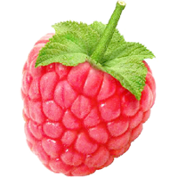 Raspberry PNG