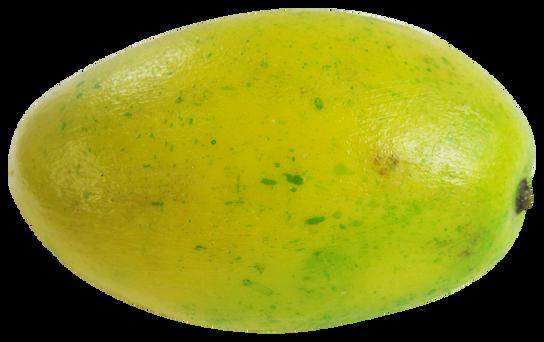 Mango-PNG-image (1).png