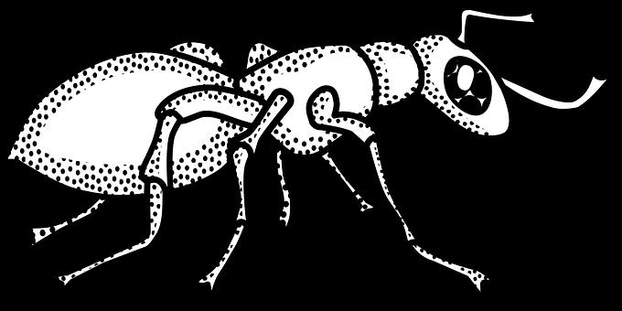 animal-1295028__340