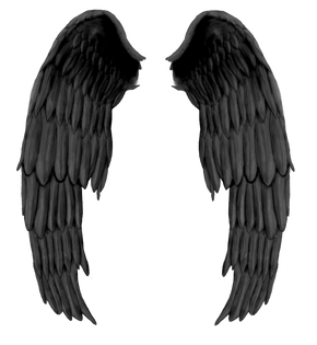 Wings-png-37