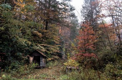 Cossyimages Autumn (92).jpg