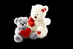teddy-15323_Clip