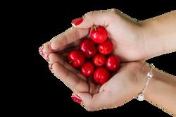 cherries-1082136_Clip