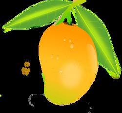Mango PNG