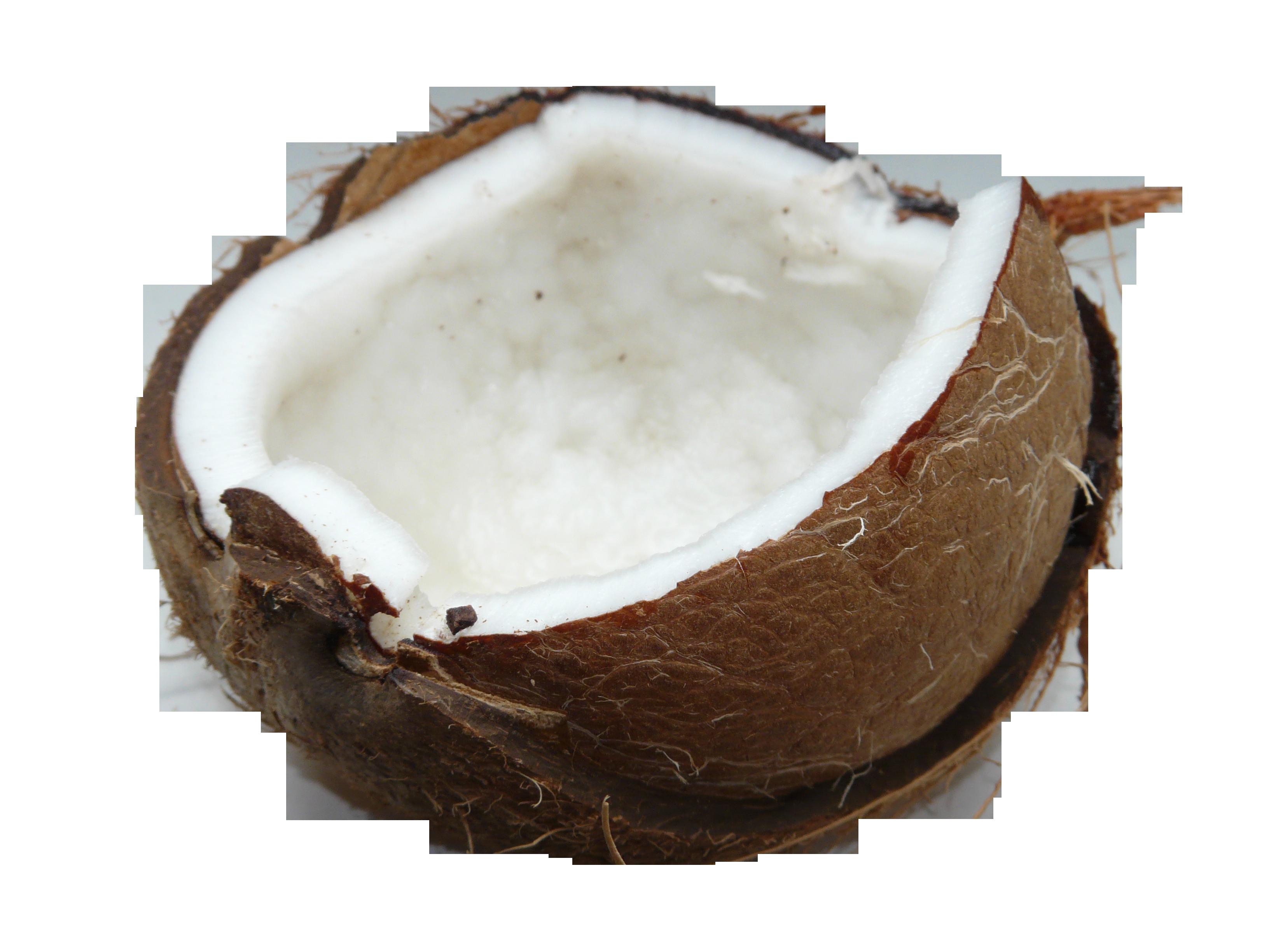coconut-60395_Clip