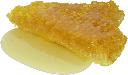 honey-2201210_960_720.png
