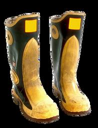 Wellington boots (60).png