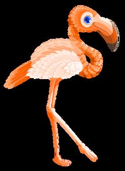 PNGPIX-COM-Flamingo-Bird-Vector-PNG-Transparent-Image.png