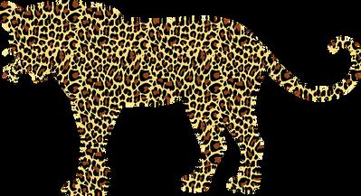 leopard-2789554__340.png