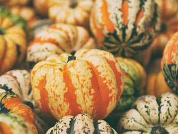 Cossyimages Autumn (8).jpg