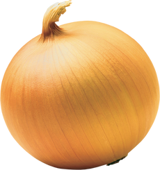 Onion, free PNGs